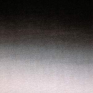 Half Yard Black Peony Gray Ombre Fade Cotton Jersey Knit Fabric