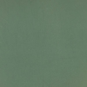 Sage Green Solid Double Brushed Jersey Spandex Blend Knit Fabric