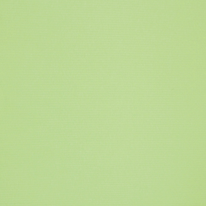 Light Lime Green Solid Cotton Wide Wale Ribbed Knit Fabric